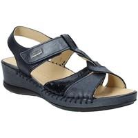 Topánky Ženy Sandále Susimoda 2379-03 Modrá