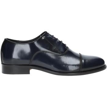 Topánky Muži Derbie Rogers 618N Modrá
