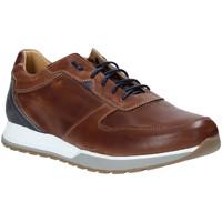 Topánky Muži Nízke tenisky Rogers 5068 Hnedá
