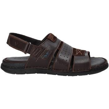 Topánky Muži Sandále Valleverde 20831 Hnedá