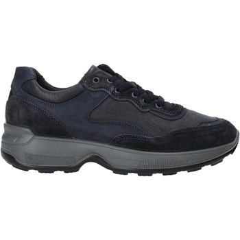 Topánky Muži Nízke tenisky IgI&CO 4114311 Modrá