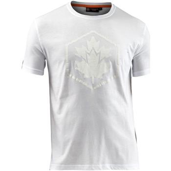 Oblečenie Muži Tričká s krátkym rukávom Lumberjack CM60343 005 514 Biely