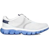Topánky Muži Nízke tenisky CallagHan 42700 Biely