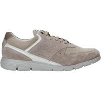 Topánky Muži Nízke tenisky Impronte IM01000A Béžová