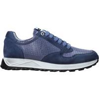 Topánky Muži Nízke tenisky Exton 741 Modrá