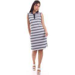 Oblečenie Ženy Krátke šaty Ea7 Emporio Armani 3HTA58 TJI3Z Modrá
