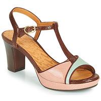 Topánky Ženy Sandále Chie Mihara NATI Hnedá / Ružová / Zelená
