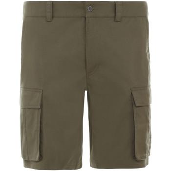 Oblečenie Muži Šortky a bermudy The North Face NF0A4CAL7D61 Zelená