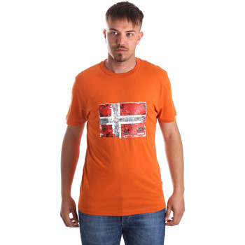 Oblečenie Muži Tričká s krátkym rukávom Napapijri N0YIJ4 Oranžová