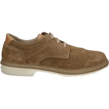 Topánky Muži Derbie Enval 7885 Ostatné