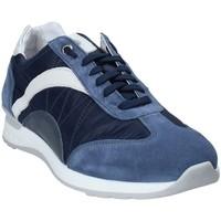 Topánky Muži Nízke tenisky Exton 661 Modrá