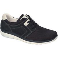 Topánky Muži Nízke tenisky IgI&CO 3118300 Modrá
