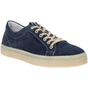 Topánky Muži Nízke tenisky IgI&CO 3134511 Modrá