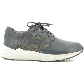 Topánky Muži Nízke tenisky Alberto Guardiani SU73452D Modrá