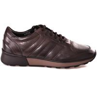 Topánky Muži Nízke tenisky Soldini 20630 2 Hnedá