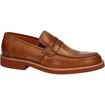 Topánky Muži Mokasíny Rogers 1008B Hnedá