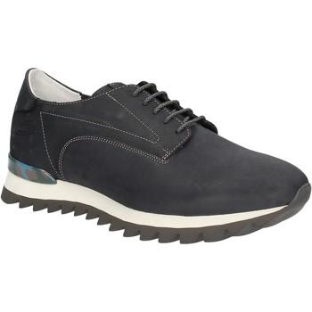 Topánky Muži Nízke tenisky Alberto Guardiani SU744559A Modrá