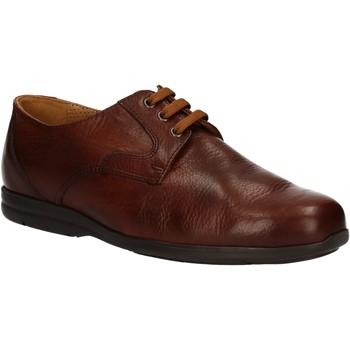 Topánky Muži Derbie Fontana 5685-VI Hnedá