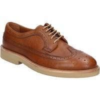Topánky Muži Derbie Maritan G 111914 Hnedá