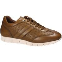 Topánky Muži Nízke tenisky Maritan G 140557 žltá