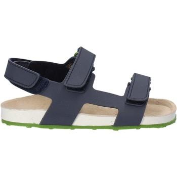 Topánky Deti Sandále Grunland SB0831 Modrá
