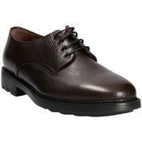 Topánky Muži Derbie Maritan G 111333 Hnedá