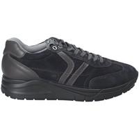 Topánky Muži Nízke tenisky IgI&CO 2137711 Modrá