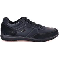 Topánky Muži Nízke tenisky Enval 2234622 Modrá