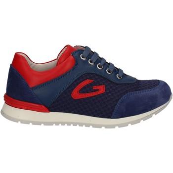 Topánky Deti Nízke tenisky Alberto Guardiani GK23301 Modrá