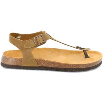 Topánky Muži Sandále Grunland SB3221 Hnedá