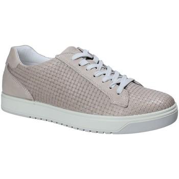 Topánky Muži Nízke tenisky IgI&CO 1125 Šedá