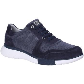 Topánky Muži Nízke tenisky Stonefly 110701 Modrá