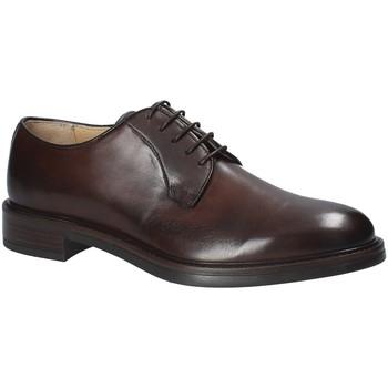 Topánky Muži Derbie Rogers 1010_1 Hnedá