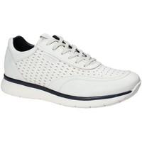 Topánky Muži Nízke tenisky Impronte IM181025 Biely