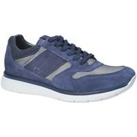Topánky Muži Nízke tenisky Impronte IM181020 Modrá