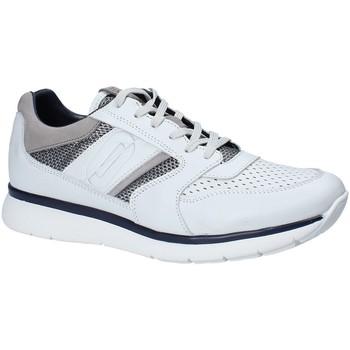 Topánky Muži Nízke tenisky Impronte IM181021 Biely