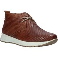 Topánky Muži Členkové tenisky IgI&CO 1120 Hnedá