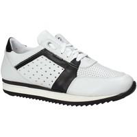 Topánky Muži Nízke tenisky Exton 558 Biely