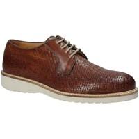 Topánky Muži Derbie Exton 886 Hnedá