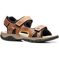 Topánky Muži Sandále Stonefly 108692 Hnedá