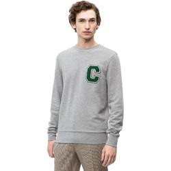 Oblečenie Muži Mikiny Calvin Klein Jeans K10K102891 Šedá