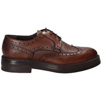 Topánky Muži Derbie Rogers 751_2 Hnedá