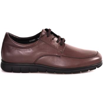 Topánky Muži Nízke tenisky Soldini 20583 P Hnedá