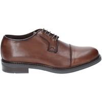 Topánky Muži Derbie Rogers 2040 Hnedá