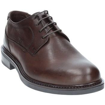 Topánky Muži Derbie Rogers 2027 Hnedá