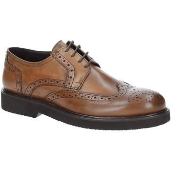 Topánky Muži Derbie Exton 5446 Hnedá
