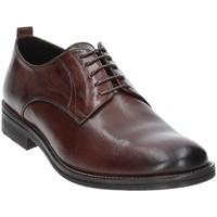 Topánky Muži Derbie Exton 9553 Hnedá