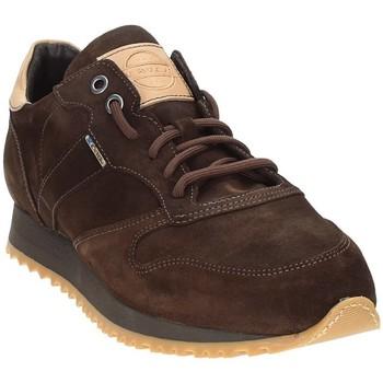 Topánky Muži Nízke tenisky Exton 777 Hnedá