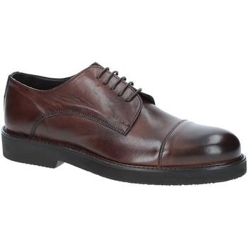 Topánky Muži Derbie Exton 5413 Hnedá