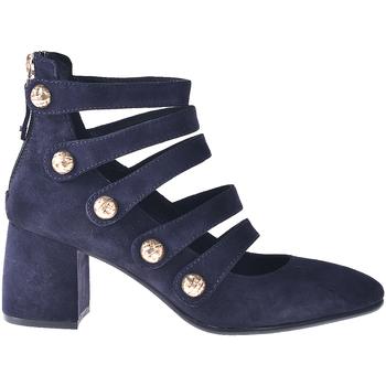Topánky Ženy Lodičky Elvio Zanon I0703P Modrá